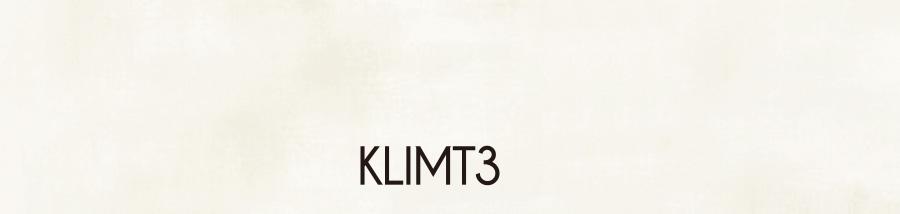 KLIMT3